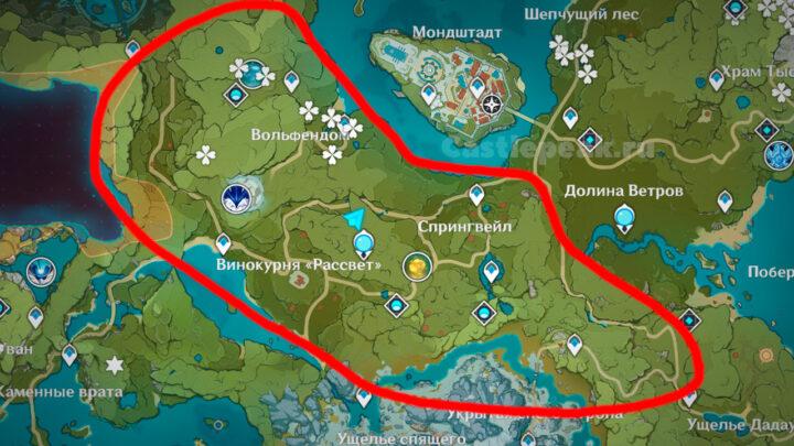 Где найти берёзы на карте в Genshin Impact