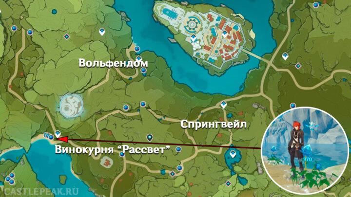 Туманный цветы на карте - Genshin Impact