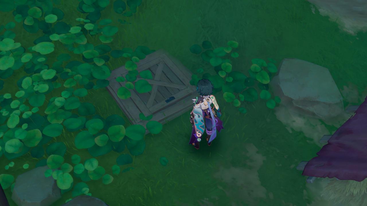 """Секретный люк на острове Рито, позволяющий начать квест """"Путь Рито"""" и получить достижение """"Ау… Есть кто?"""" - Genshin Impact"""
