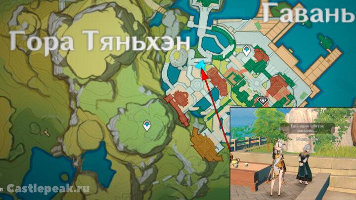 Мадам Пин на карте в Genshin Impact