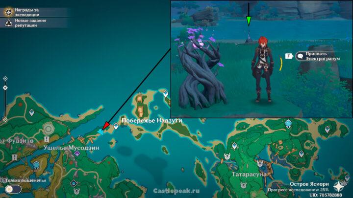 Шестой электро меч, торчащий из земли на островах Инадзумы - Genshin Impact