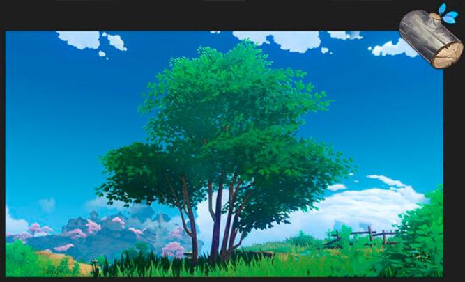 Дерево Отоги в Genshin Impact