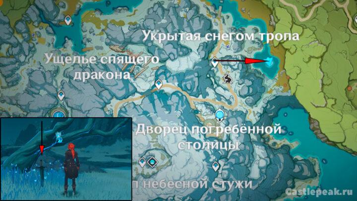 Местоположение шкатулки принцессы на карте в Genshin Impact