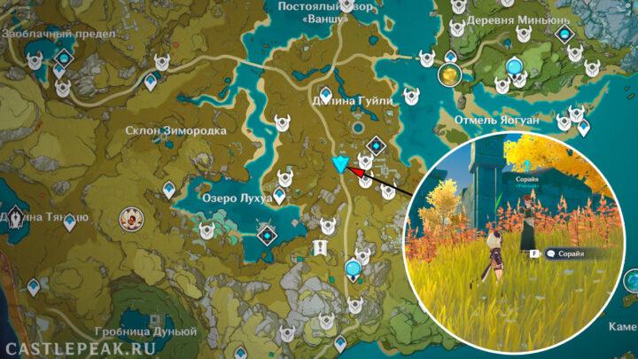 Получить квест Непостоянство сокровищ в Genshin Impact можно у персонажа Сорайя