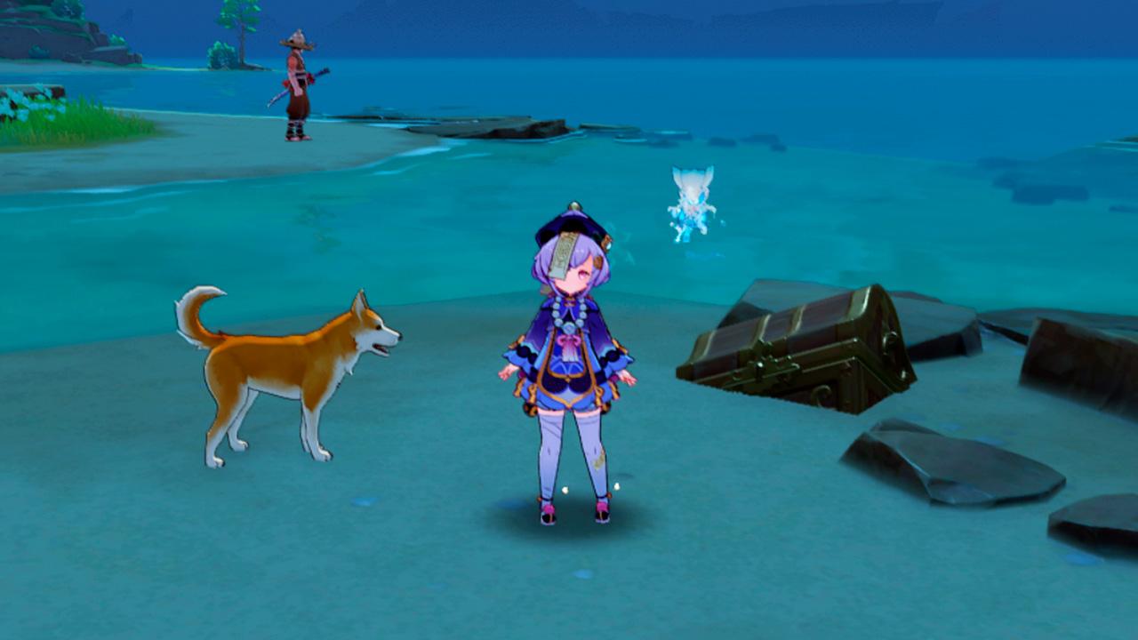Собака Торатаро, спасённая из клетки и драгоценный сундук в награду - Genshin Impact