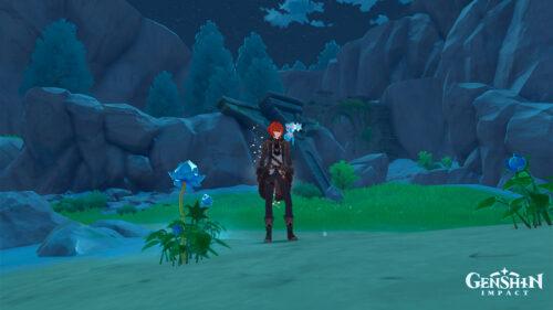Где найти туманные цветы в Genshin Impact