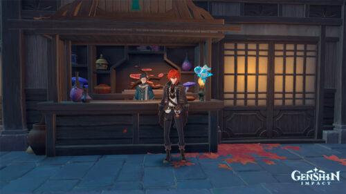 «Торговец из Инадзумы» и «Обслуживание после продажи» в Genshin Impact